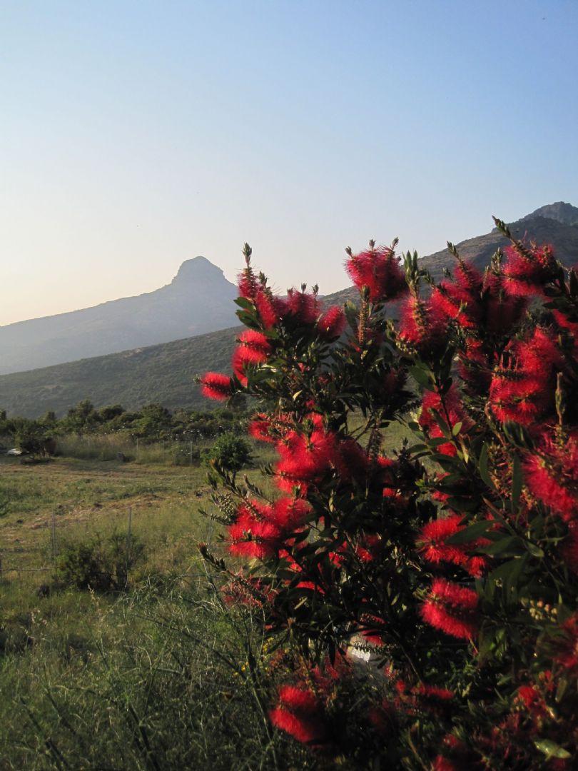 _Staff_175_2895.jpg - Sardinia - La Costa Verde Short Break - Mountain Bike Holiday - Self Guided - Italia Mountain Biking