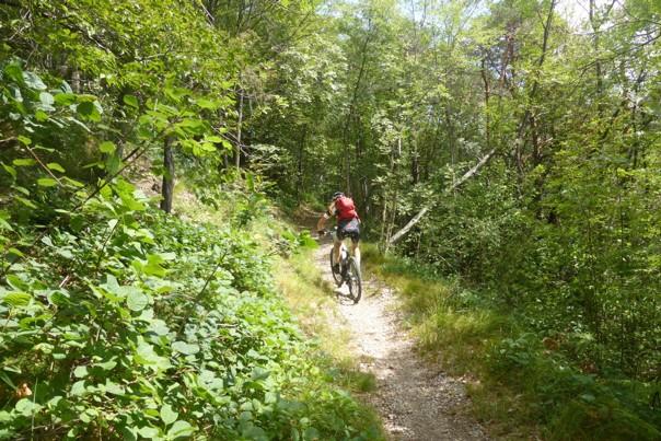 IDB2.jpg - Italy - Dolomites of Brenta - Guided Mountain Bike Holiday - Italia Mountain Biking