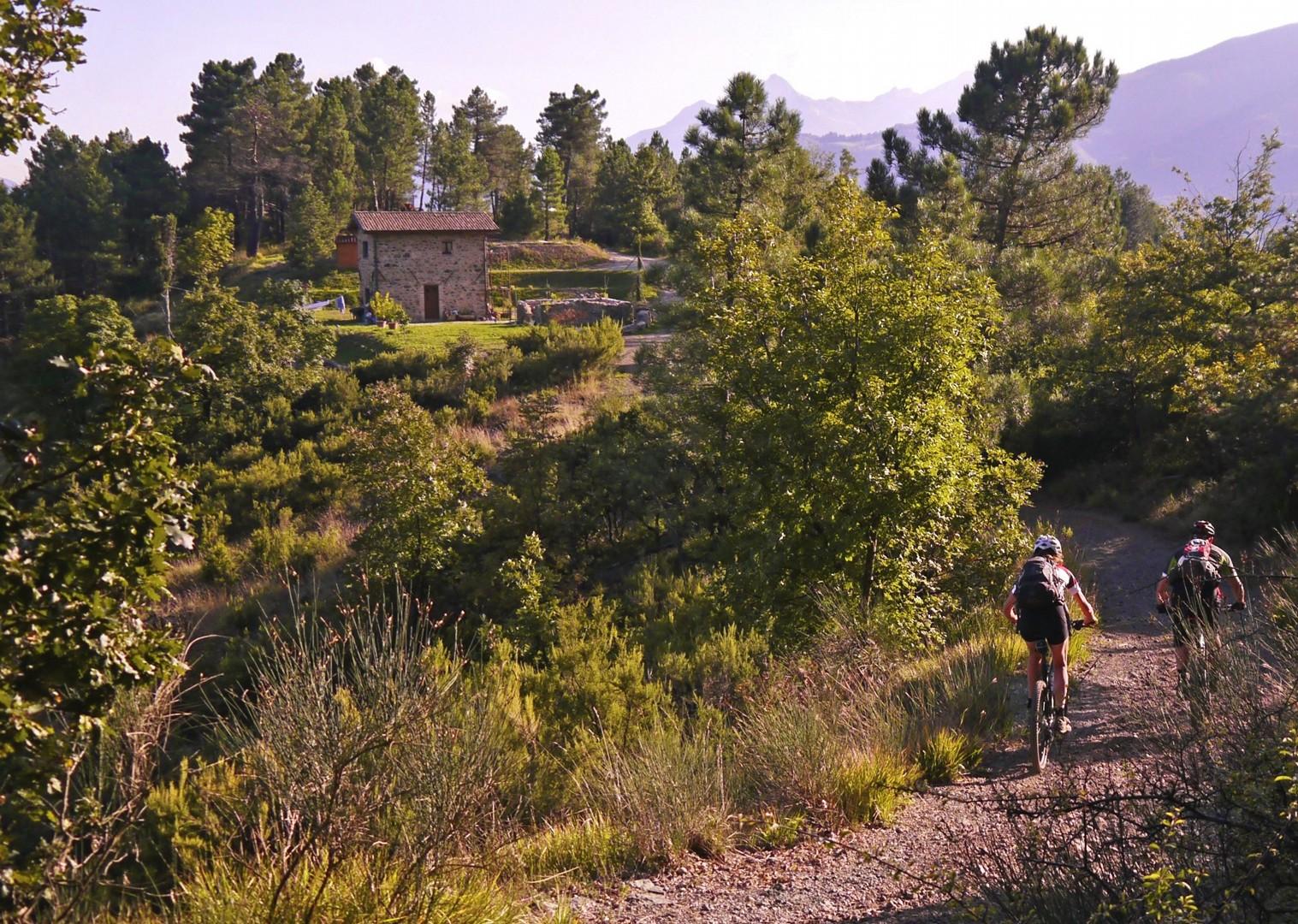_Holiday.863.16220.jpg - Italy - Via Francigena (Tuscany to Rome) - Guided Mountain Biking Holiday - Italia Mountain Biking