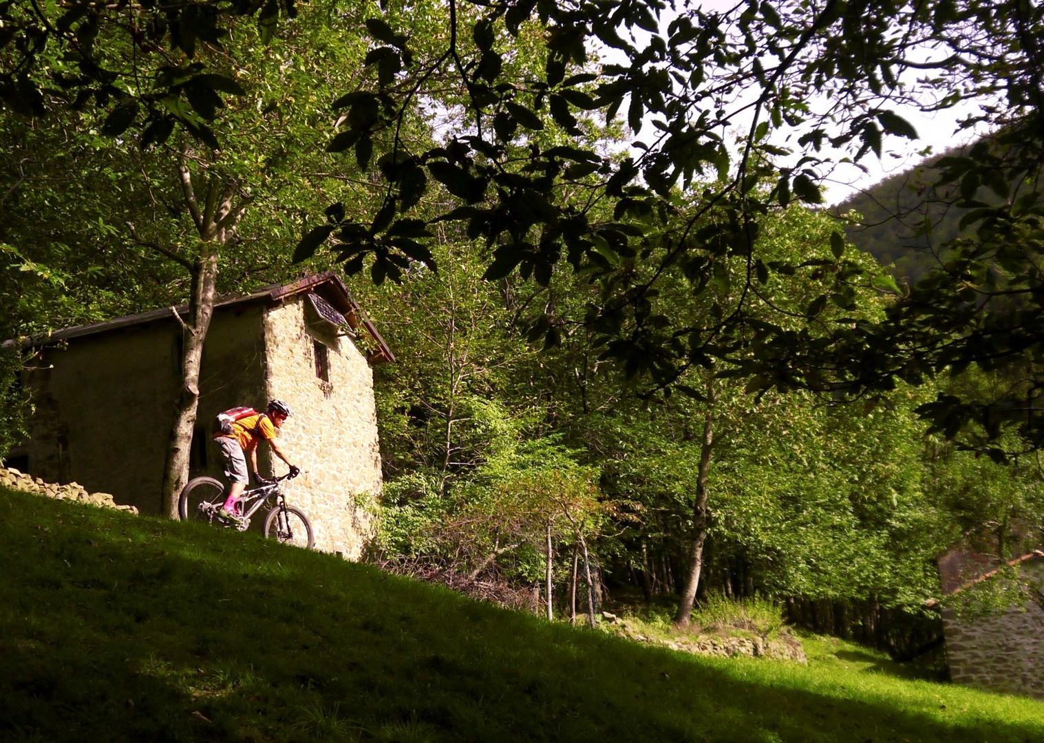 _Holiday.863.16223.jpg - Italy - Via Francigena (Tuscany to Rome) - Guided Mountain Biking Holiday - Italia Mountain Biking