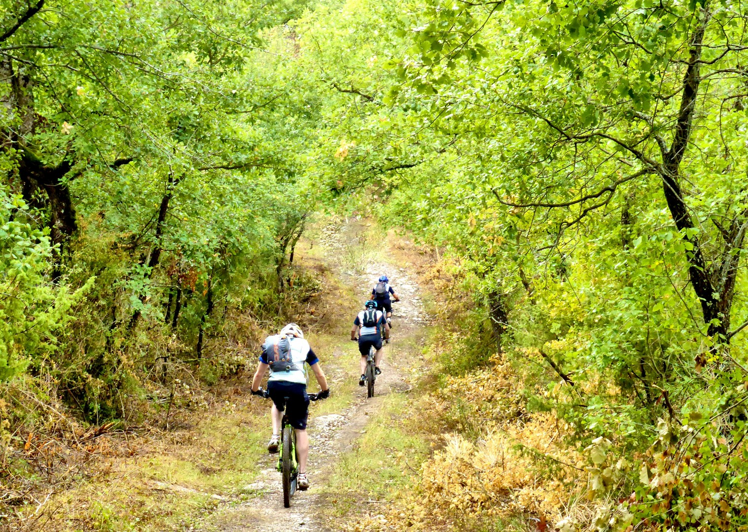 Foto 11-09-17, 10 21 59.jpg - Italy - Via Francigena (Tuscany to Rome) - Guided Mountain Biking Holiday - Italia Mountain Biking