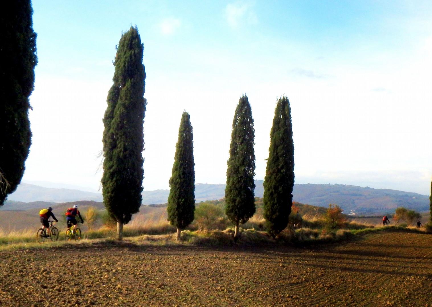 PB090046a.JPG - Italy - Via Francigena (Tuscany to Rome) - Guided Mountain Biking Holiday - Italia Mountain Biking