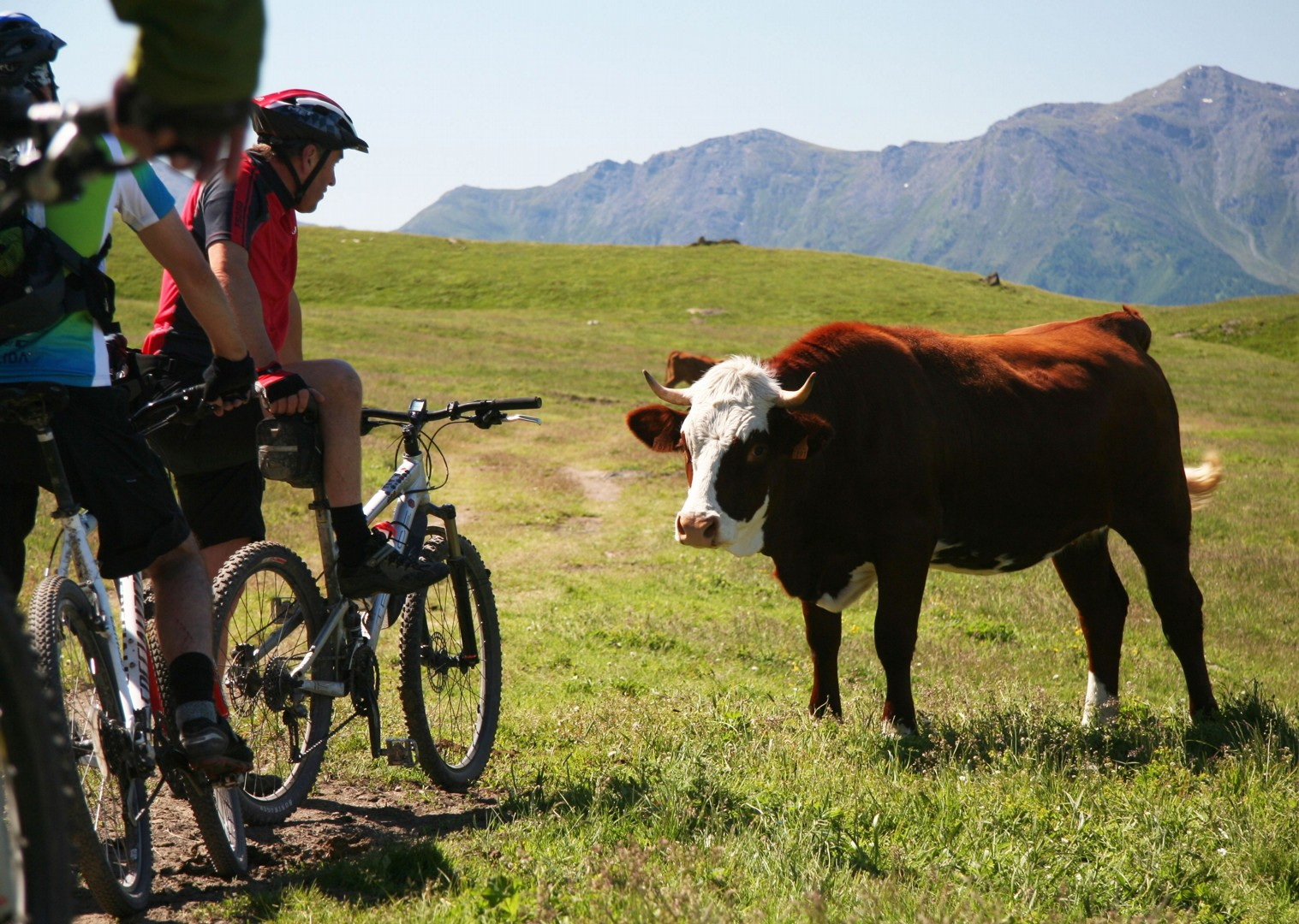 expert-guides-mountain-bike-holiday-in-the-alps-alpine-adventure.JPG - Italy and France - Alpine Adventure - Guided Mountain Bike Holiday - Italia Mountain Biking