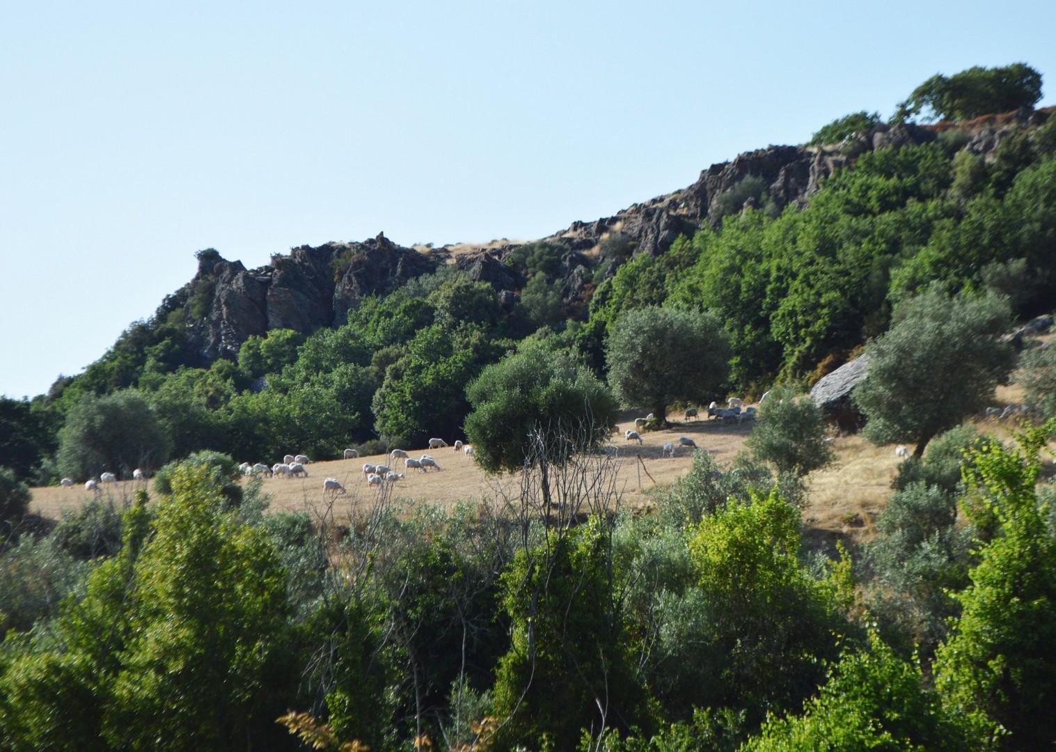 mari-emi-sardinia-leisure-cycling-holiday.jpg - Italy - Sardinia - West Coast Wonders - Self-Guided Leisure Cycling Holiday - Italia Leisure and Family Cycling