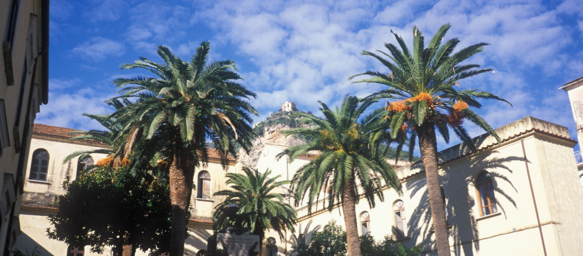 Palm Tree Piazza.jpg - Italy - Cilento and The Amalfi Coast - Guided Leisure Cycling Holiday - Italia Leisure and Family Cycling