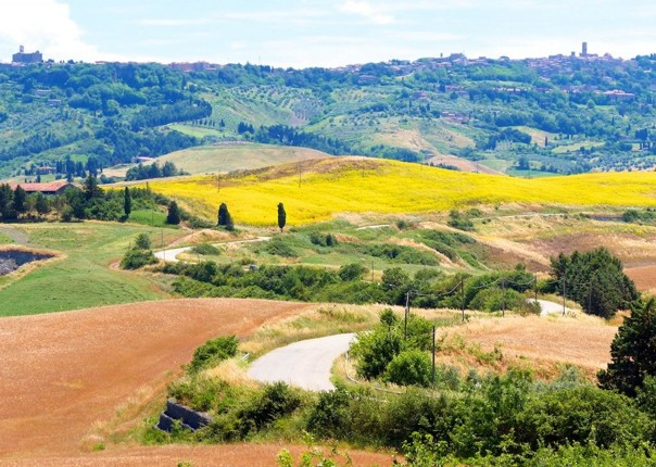 cycling-holiday-tuscany 18.jpg - Italy - A Taste of Tuscany - Guided Leisure Cycling Holiday - Italia Leisure and Family Cycling