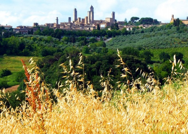 cycling-holiday-tuscany 3.jpg - Italy - A Taste of Tuscany - Guided Leisure Cycling Holiday - Italia Leisure and Family Cycling
