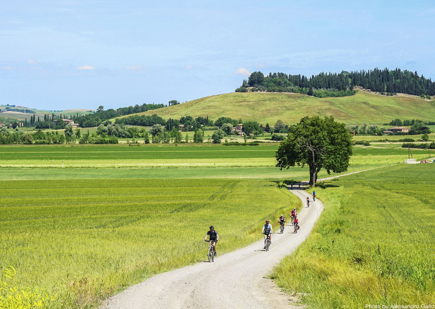 guided-holiday-on-bikes-thorugh-tuscan-fields-and-farms.jpg - Italy - A Taste of Tuscany - Italia Leisure and Family Cycling