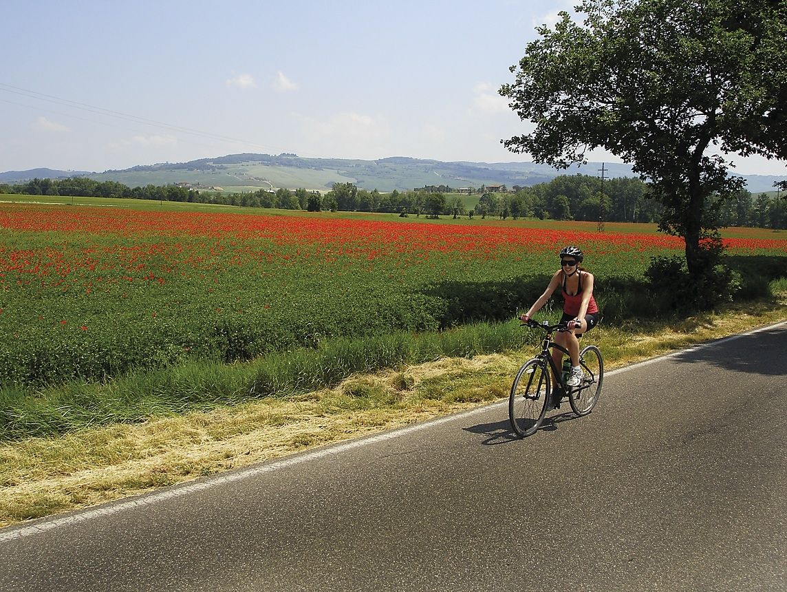 Tuscany 3.jpg - Italy - A Taste of Tuscany - Italia Leisure and Family Cycling