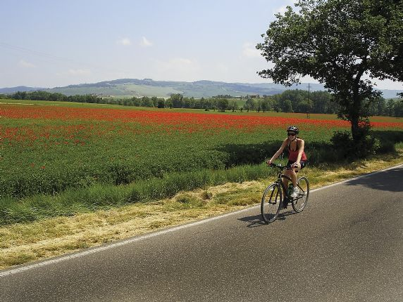 Tuscany 3.jpg - Italy - A Taste of Tuscany - Guided Leisure Cycling Holiday - Italia Leisure and Family Cycling