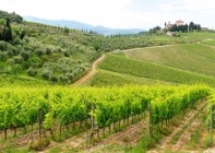 Italy - Classic Tuscany - Self-Guided Leisure Cycling Holiday Image