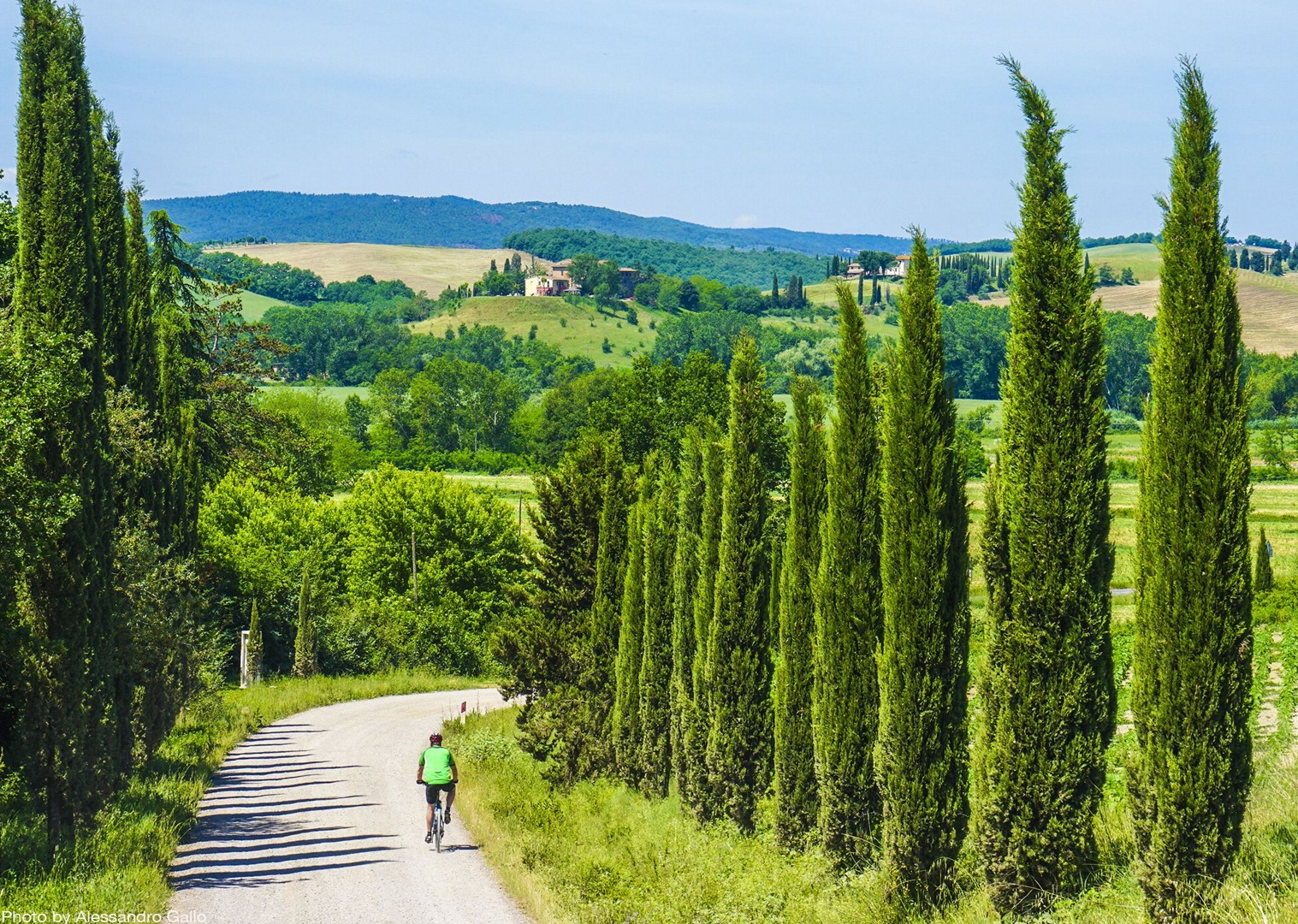 cypress-trees-tuscany-sights-by-bike-fields-self-guided.jpg - Italy - Classic Tuscany - Self-Guided Leisure Cycling Holiday - Italia Leisure and Family Cycling