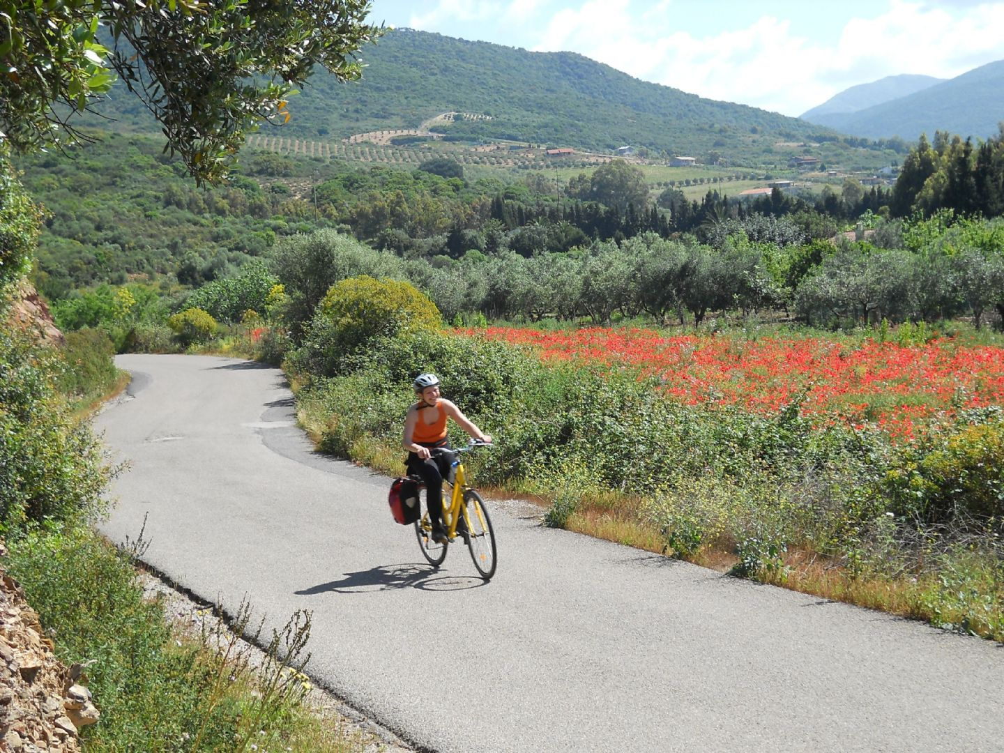 BITAS 009.jpg - Italy - Piemonte - Vineyards and Castles - Leisure Cycling Holiday - Guided - Italia Leisure and Family Cycling