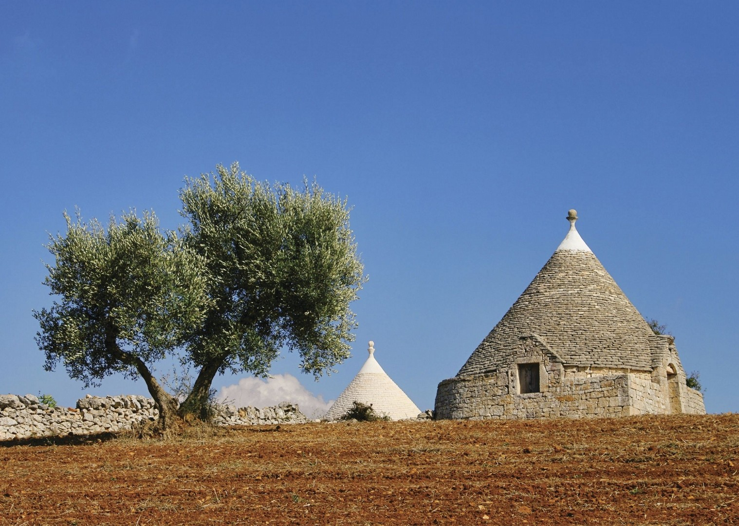 cycling-holiday-italy-puglia-trulli-culture.jpg - Italy - Puglia - Guided Leisure Cycling Holiday - Italia Leisure and Family Cycling