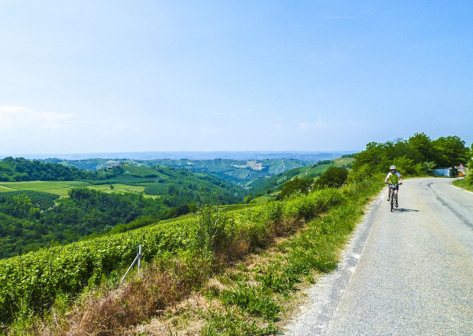 wine-tour-biking-barolo-barbaresco-nebbiolo-moscati-vineyard-culture-italy.jpg - Italy - Piemonte - Vineyards and Views - Self-Guided Leisure Cycling Holiday - Italia Leisure and Family Cycling
