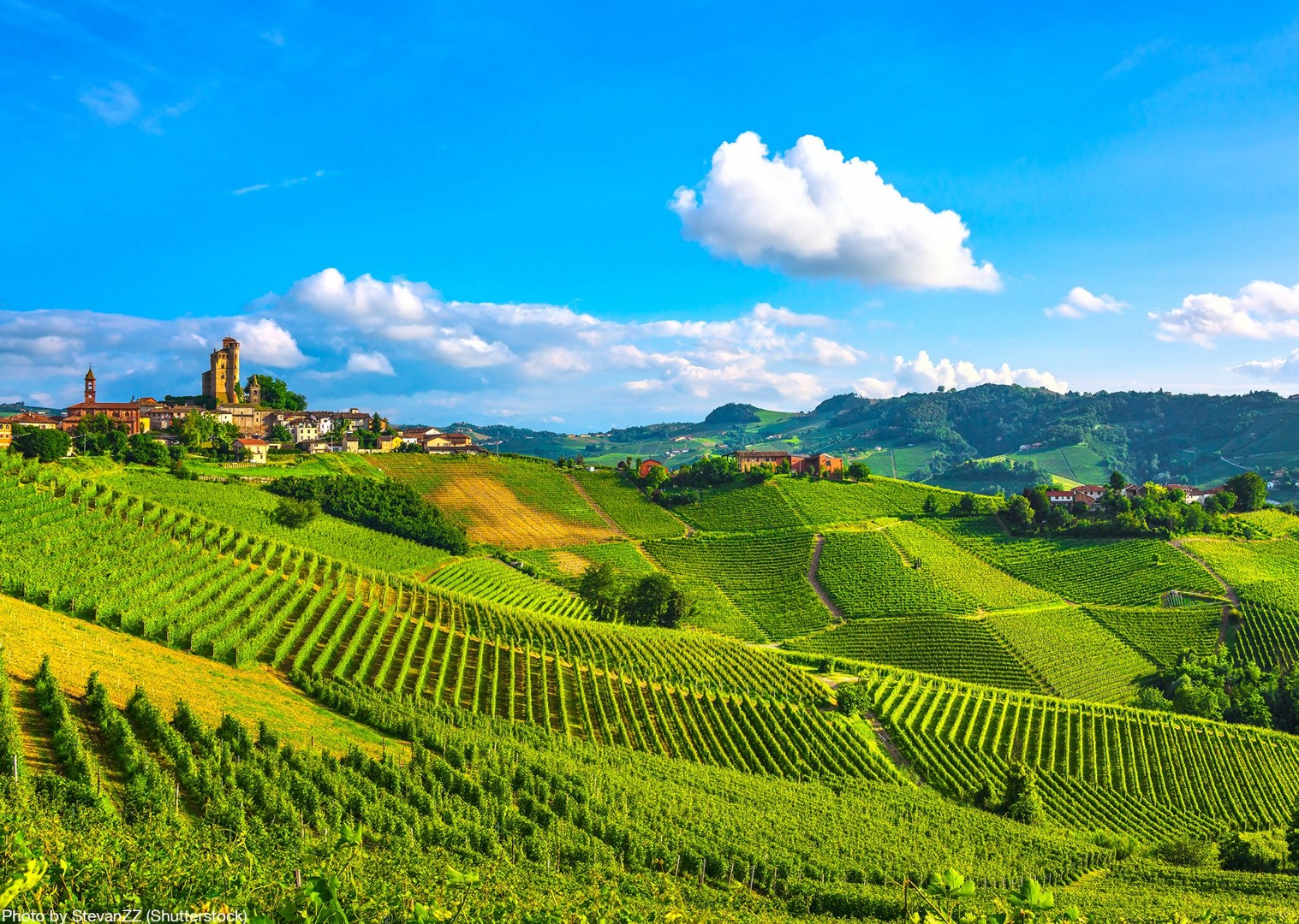 italy-piemonte-cycling-tour-self-guided-vineyards-langhe-roero.jpg - Italy - Piemonte - Vineyards and Views - Self-Guided Leisure Cycling Holiday - Italia Leisure and Family Cycling