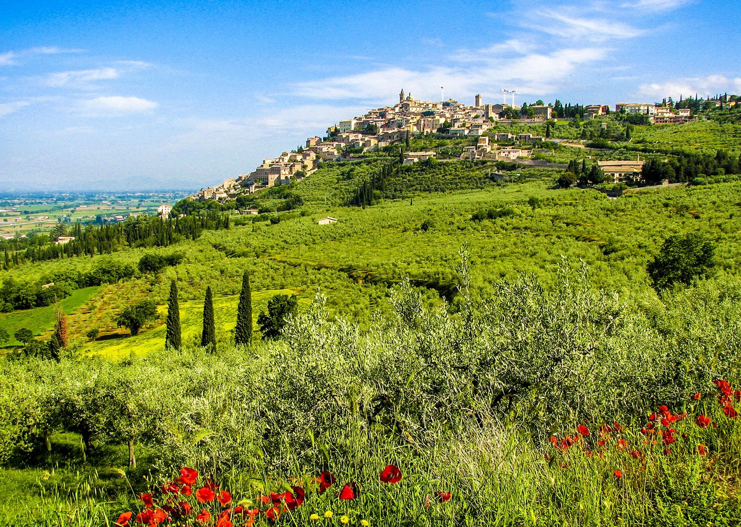 zicht op Trevi.jpg - Italy - Green Valley of Umbria - Self-Guided Leisure Cycling Holiday - Italia Leisure and Family Cycling