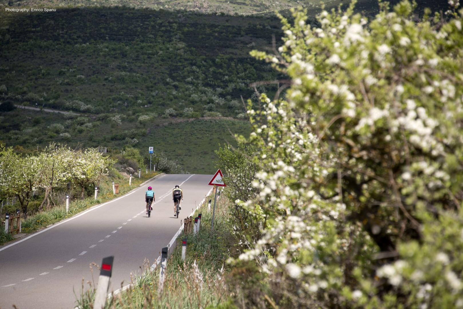 sardiniac2croad.jpg - Italy - Sardinia - Coast to Coast - Self-Guided Road Cycling Holiday - Italia Road Cycling