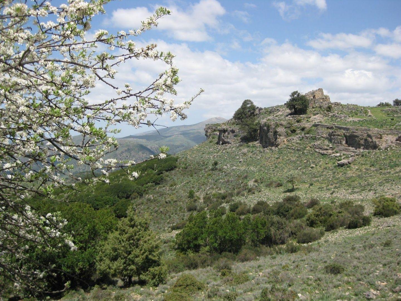 IMG_0144.jpg - Italy - Sardinia - Coast to Coast - Self-Guided Road Cycling Holiday - Italia Road Cycling