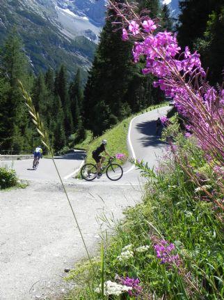 DolomitesRoadCycling82.jpg - Italy - Dolomites and Alps - Italia Road Cycling