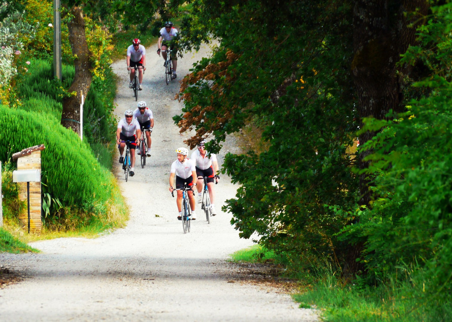 group-guided-cycling-white-roads-italy-tuscany.jpg - Italy - Tuscany Tourer - Guided Road Cycling Holiday - Italia Road Cycling