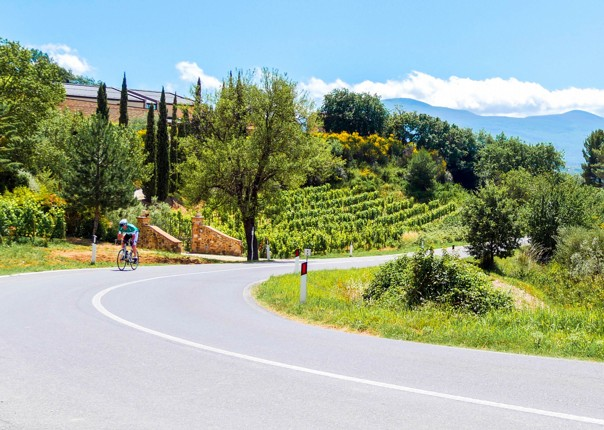 Italy - Tuscany Tourer - Road Cycling Holiday Image