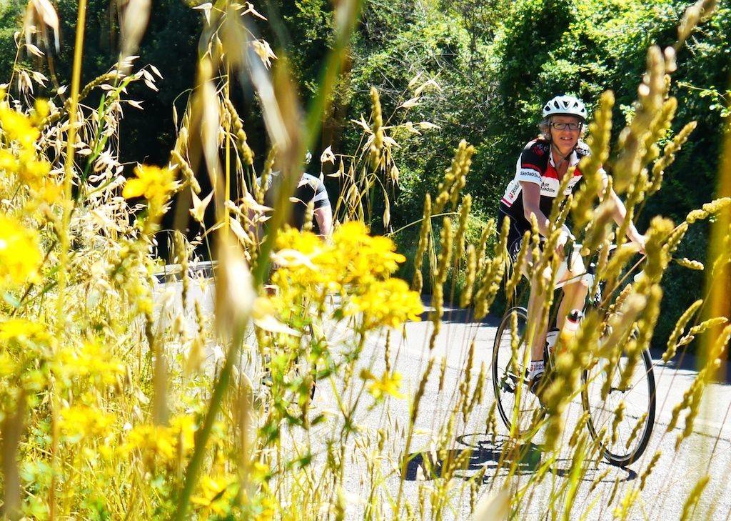 cycling-holiday-tuscany-italy.jpg - Italy - Tuscany Tourer - Self Guided Road Cycling Holiday - Italia Road Cycling
