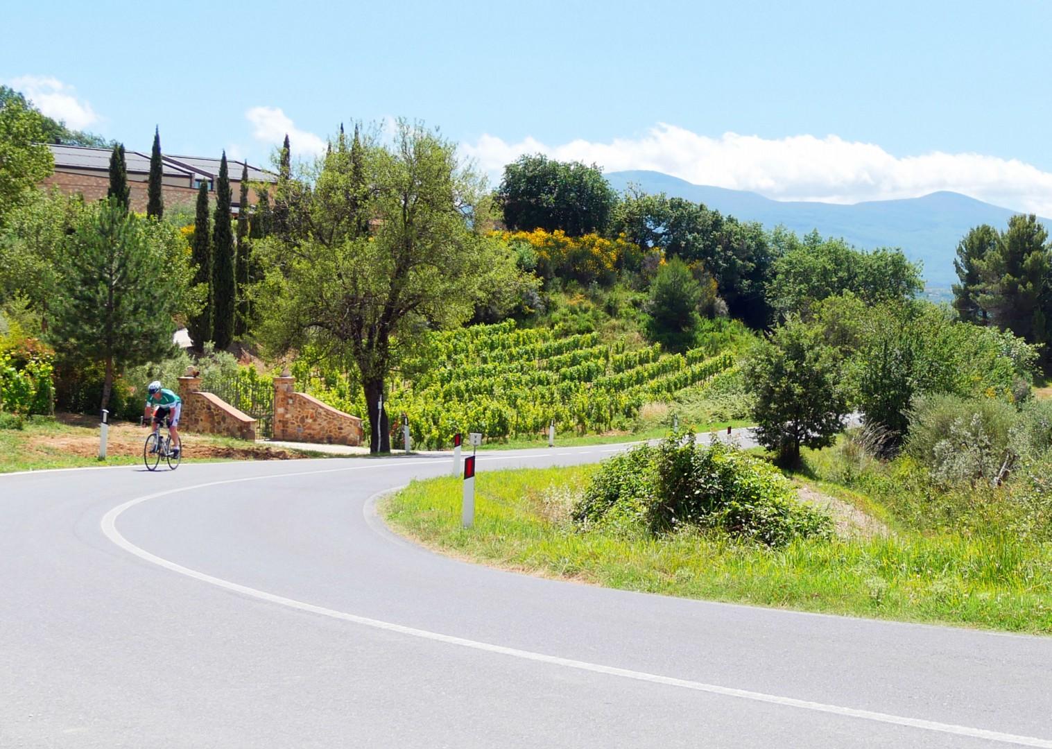 tuscany-tourer-self-guided-road-cycling.jpg - Italy - Tuscany Tourer - Self Guided Road Cycling Holiday - Italia Road Cycling