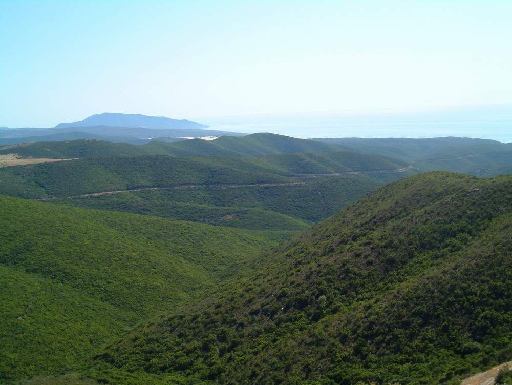Day 2 - Oasi del Cervo.JPG - Sardinia - South West Coast and Mountains Walk - Guided Holiday - Walking