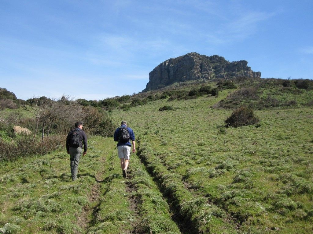 Day 3 - Monte Arcuentu.JPG - Sardinia - South West Coast and Mountains Walk - Guided Holiday - Walking