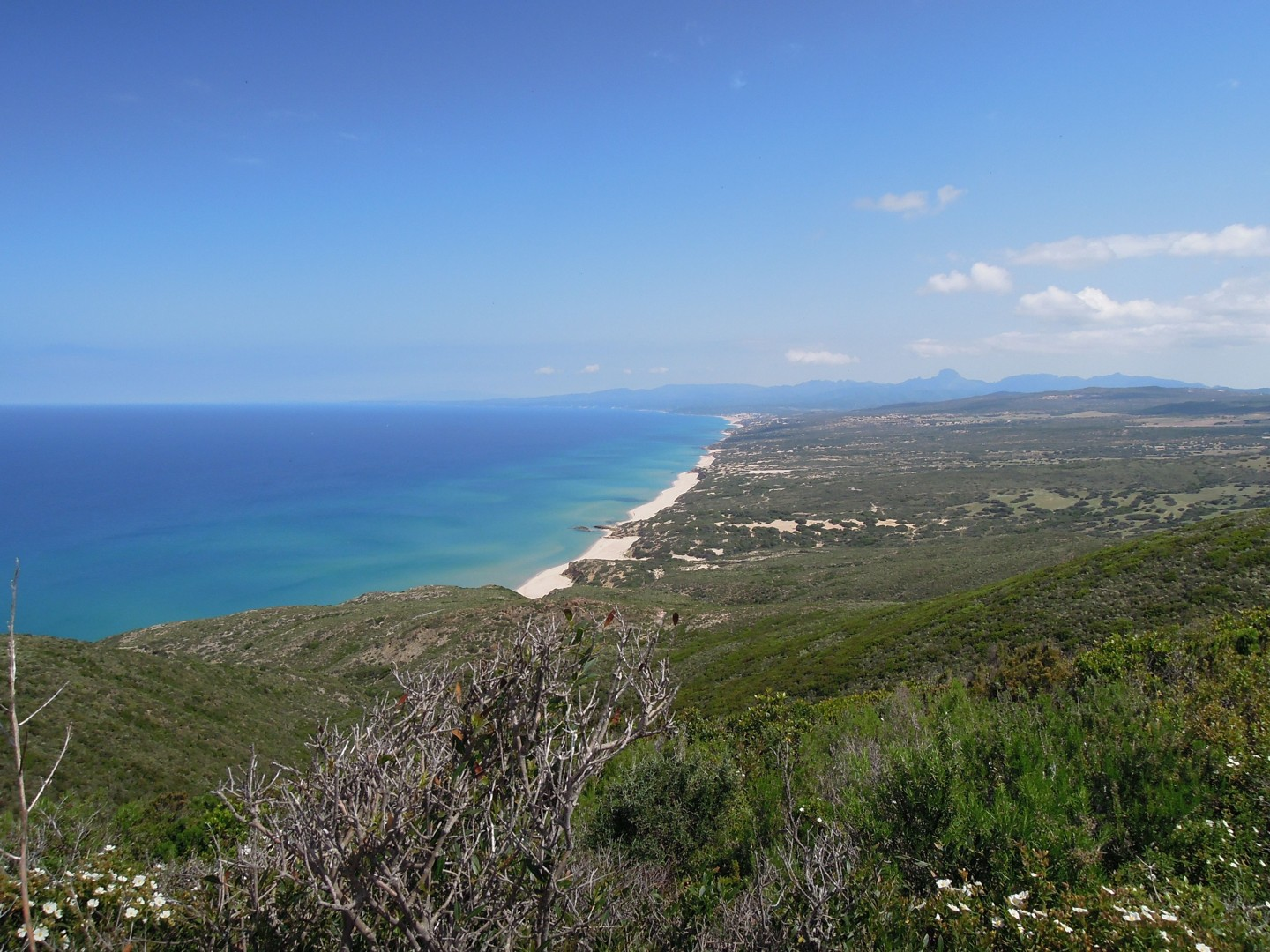 Shivu.jpg - Sardinia - South West Coast and Mountains Walk - Guided Holiday - Walking